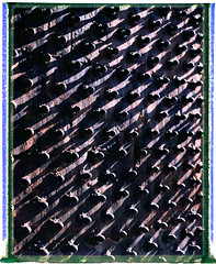 palace door (D:R) Tags: landcamera packfilm instantfilm fourdesigns fujifp100c epsonv700 polaroid110b recoveredneg