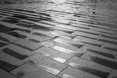 nach dem Regen (wpt1967) Tags: bw sun reflection wet rain sw spiegelung nass feucht canon28mm eos60d wpt1967