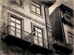 Musas de plstico... (Leo ) Tags: mannequin portugal naked nude balcony muse porto dummy musa balcn oporto maniqu desnuda