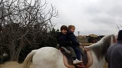orvalle-infantil-granjaelacebo (1)