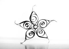 Paper Flower (nikagnew) Tags: blackandwhite bw flower macro paper paperart spiral petals loop highkey swirl backlit backlighting coiled quilling curlicue