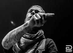 Justin Hills (frostydg) Tags: boston concert nikon tour bass guitar massachusetts concertphotography musicman lowell bostonmusic ernieball tsongas epitaphrecords theworldtour ernieballmusicman d5200 justinhills sleepingwithsirens davegannonphotography