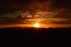 Mexican Sunset (TomahawkPunk) Tags: sunset arizona southwest landscape twilight desert dusk sonoran nationalmonument sonorandesert organpipe organpipecactusnationalmonument