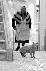 Le semplici cose... (modestino68) Tags: street bw cat strada bn oldwoman gatto vecchia viniciocapossela