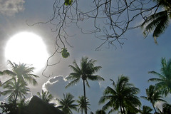 Sunbeam Hotel KIAORA Tahiti Rangiroa2 (sapphire_rouge) Tags: france resort lagoon tahiti atoll rangiroa polynesia snorkeling ngc  franchpolynesia    atool polynsiefranaise  island kiaora