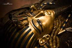 Sarcophagus (max.fontanelli) Tags: king treasure tomb egypt re tesoro tomba egitto oro tutankhamun pharaon golg faraone