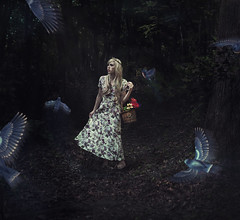 Off the Path (Rachel.Adams) Tags: flowers autumn portrait fall birds fairytale forest photoshop dark lost wings pretty princess magic fineart story fantasy wig stray mystical scared magical wandering maiden bluebirds fineartphotography darkforest lostgirl darkwoods conceptional artisticportrait lostprincess conceptionalphotography fairytaleportrait lostmaiden strayingfromthepath