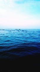 The Tourist EyeEm Best Shots Travel Caspian Sea Waves Eyeemphotography Colorful Spring Water Reflections Sky Mustseeiran Blue at Rasht (BardyaK) Tags: travel blue sky spring colorful waves waterreflections caspiansea thetourist eyeemphotography mustseeiran eyeembestshots