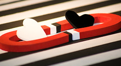 Macro Monday's opposites (peterbaird100) Tags: sexy love nikon oppositesattract themeopposites macromondays hearts horseshoemagnets macro mondays opposites attract black white