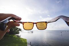 C38A3365-2 (JasonTuno) Tags: sunglasses backyard sunset bay florida canon 5d mark iii 50mm 12 yard grass summer good vibes electric