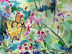 Summer Visitor (glantine) Tags: butterfly papillon swallowtail summer t jardin garden cheznous aquarelle watercolour watercolor art painting easterntigerswallowtail