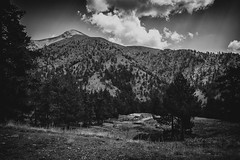 in the mountain hills (partis90) Tags: fujifilm xpro2 voigtlander ultron 35mm 17 asph fuji sw mon ochrome bw schwarzweiss photojournalism landscape photography
