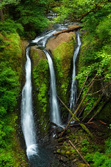 Triple the falls, triple the fun (Anna Gorin) Tags: triplefalls oregon columbiarivergorge pacificnorthwest longexposure waterfall green lush forest tranquility travel landscape pnw canon 5diii 50mm f14