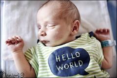 Elliot1, 4 jours. (nanie49) Tags: france francia bb baby nouveaun newborn reciennacido nanie49 nikon d750 portrait retrato