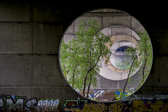 DSC_5805 (kabatskiy) Tags: city bridges cars nature abstracts cats beer