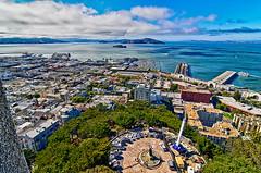 Pearl of the Pacific (Oblivious Dude) Tags: sanfrancisco sf ca california coittower marina embarcadero sanfranciscobay alcatraz tiburon sausalito tokina1224 tokina1224mm d7000