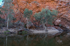 MacDonnell Ranges Ormiston Gorge Northern Territory-3