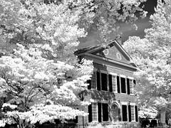 Leaves and Bricks - Gold Museum B&W (Neal3K) Tags: bw blackwhite ir infraredcamera kolarivisionmodifiedcamera 720nm trees leaves bricks dahlonega georgia goldmuseum vintagebuilding