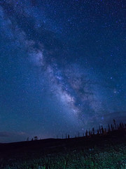 The Arm of Creation (PlataYOro) Tags: colorado astrophotography stars universe astro star milkyway cosmos night longexposure camping camp forest summer galaxy
