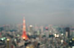 -3 (UME2nd) Tags: fujifilm japan natura classica