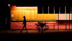Ballard, Washington (@GilAegerter / klahini.com) Tags: nikon nikkor seattle washington pastels 1855mmf3556gvr nikond3200 d3200