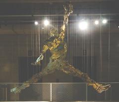 #23 (yekim sicap) Tags: jordan goat nike niketown kicks jumpman flight