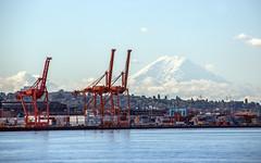 Port of Seattle (WalrusTexas) Tags: seattle port crane pugetsound mtrainier mountain sky sea