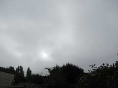 Saturday, 1st, Autumnal feel IMG_7716 (tomylees) Tags: essex morning autumn october 1st 2016 saturday weather grey overcast