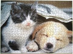 Rveille-toi (Akira Matoba) (Leonisha) Tags: puzzle jigsawpuzzle cat chat katze ktzchen kitten dog hund welpe puppy nathan