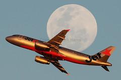 Jetstar Airbus A320-232 VH-VQF (Mark Harris photography) Tags: spotting aircraft plane aviation canon yssy 5d sydneyairport