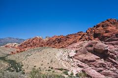 DSC01572 (elenafrancesz) Tags: red rock canyon wordless
