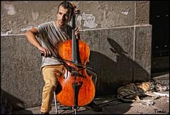 - THE CELLIST - (Tomas Mauri) Tags: espaa barcelona manresa voloncelle cello violoncello checo violonchelo msico musician musik musique musicista musica msica sony catalua catalunya catalonia perro chico joven dog young calle street