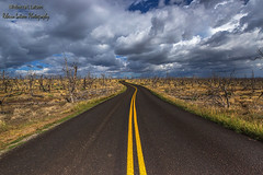 The Road To Cliff Palace, Mesa Verde National Park, Colorado (rebeccalatsonphotography) Tags: road leadingline np nationalpark mesaverde canon rebeccalatsonphotography co colorado clouds stormy moody