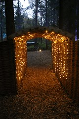 2016 - 14.10.16 Enchanted Forest - Pitlochry (17) (marie137) Tags: enchanted forest pitlochry mobrie137 scotland lights music people water reflection trees shows food fire drink pit patter shapes art abstract night sky tour family walk path bells smoke disco balls unusual whisperer bridge wood colour fun sculpture day amazing spectacular must see landscape faskally shimmer town