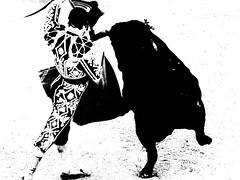 Morante de la Puebla (aficion2012) Tags: morante de la puebla torero matador corrida bull bullfight toro toreau arles goyesca goyesque france francia 2016 monochrome bw nb duotone monotone capote capear capeando capa