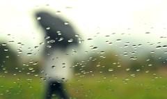 * (PattyK.) Tags: ioannina giannena giannina epirus ipiros balkans hellas ellada europe europa europeanunion rain raindrops umbrella autumn october 2016 nikond3100 silhouette ilovephotography amateurphotographer          greece grecia griechenland