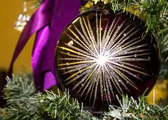 Ornament (Pauline Brock) Tags: christmas winter macro ball festive december christmastree christmasornament bauble allthatglitters macromondays