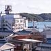 渡鹿野島 画像20