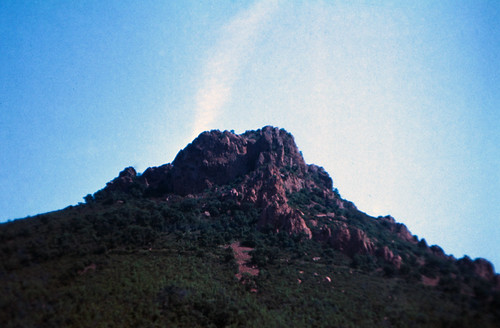 "118F Massif de l'Esterel • <a style=""font-size:0.8em;"" href=""http://www.flickr.com/photos/69570948@N04/15756763948/"" target=""_blank"">View on Flickr</a>"