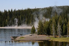 Yellowstone National Park Scenery, Another Ho-Hum Day In The Wilderness. Photo by Wes (wesbird72) Tags: park travel b wild lake water chelsea hiking michigan smoke birding hike smoking fir yellowstonenationalpark yellowstone wilderness vapor hotsprings vapors firtree geysers firtrees washtenawcounty chelseamichigan birdingwyoming birdingyellowstone