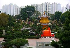 photo - Nan Lian Garden (Jassy-50) Tags: china bridge lake skyscraper garden hongkong pagoda photo highrise chinesegarden kowloon nanlian nanliangarden tangdynastystyle asiacruise2015