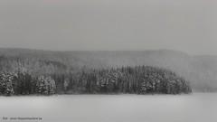 20150122069898 (koppomcolors) Tags: winter snow vinter sweden sverige scandinavia snö värmland varmland koppom skillingmark koppomcolors