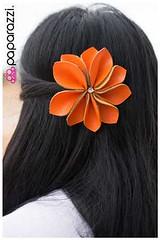 1187_hc-orangekit1july-box01