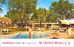 Swimming pool at Motel Winnemucca; Winnemucca, Nevada (1950sUnlimited) Tags: travel vacation swimming vintage roadtrips pools postcards rest leisure hotels roadside poolside relaxation winnemucca motels midcentury swimmingpools lounges winnemuccanevada leisureactivites