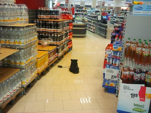 Verloren im Supermarkt / Lost in supermarket