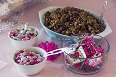 Candy & Nuts (Javcon117*) Tags: york pink food white holiday silver yummy yum candy pastel nuts kisses valentine delicious snack theme hershey mm babyshower peppermint pinkish patties glazed pecans 2015 javcon117 frostphotos emilyzumbrun