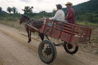 Cart in Brazil