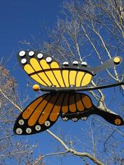 Senza Butterfly (Nancy D. Brown) Tags: california art butterfly monarch napa senza