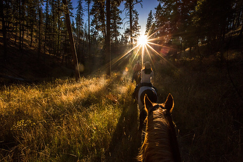 Triple Creek Ranch Horseback Ride