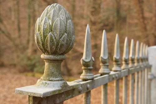 #cancello